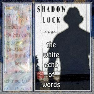 1ppp-¬12 shadow lock white echo 6 sml