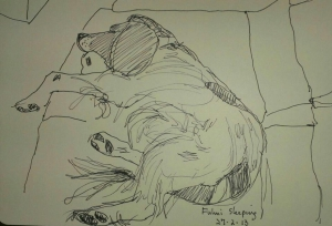 drawing of fulmi asleep 27 feb 13