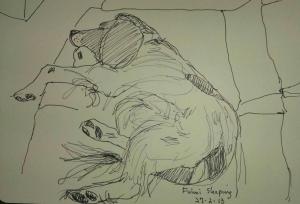 drawing of fulmi asleep 27 feb 13