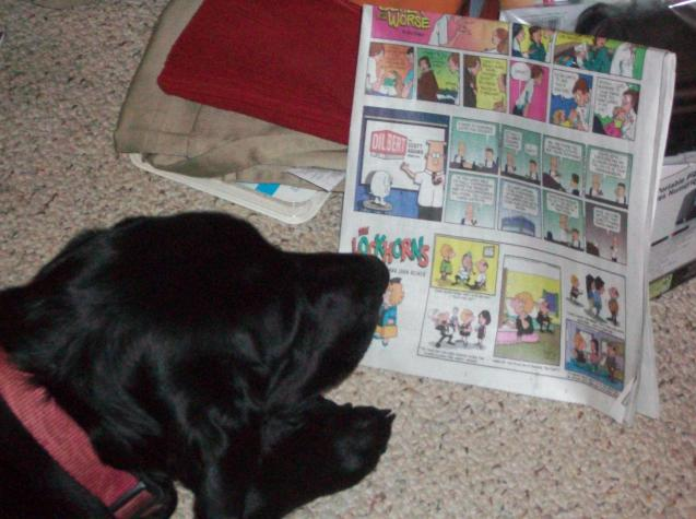 Ellie reading cropped