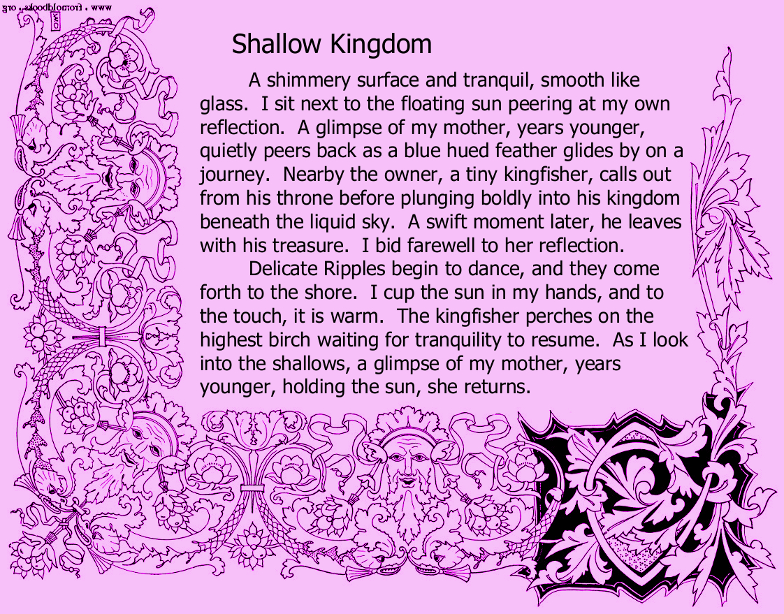 Shallow Kingdom