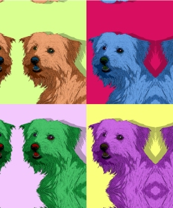 Lacey - pop art.
