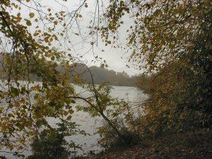 Bolam Lakes, Northumberland