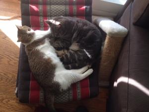 Joan's beatnik cats Lawrence Ferlinghetti & Jack Kerouac