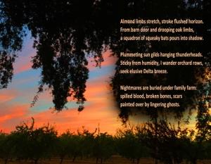 JenniferLagier-RanchSunset