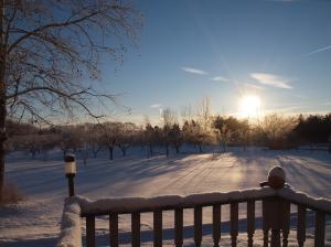 Winter 2015. Photo by P. Tonery.