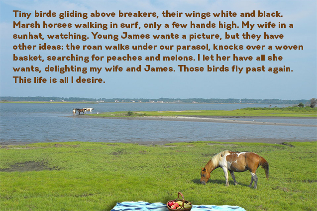 WFLantry-Chincoteague