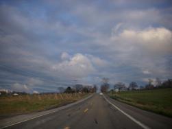 drive-by cornstalks